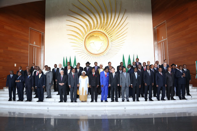 African Union Summit, 2013.